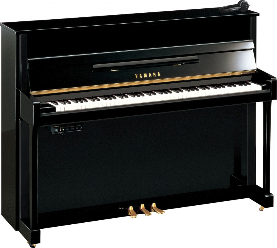 Yamaha B2 SG2 PE + B&O Beolab 6000*