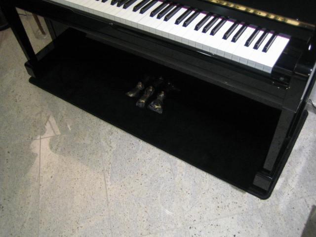 Pianocarpet breed