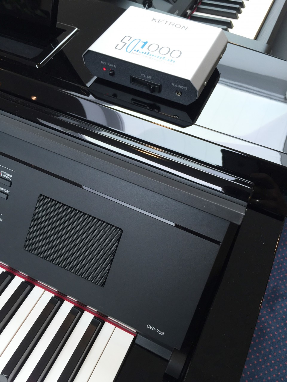 Ketron SD1000 incl. SoundPatch voor CVP-709
