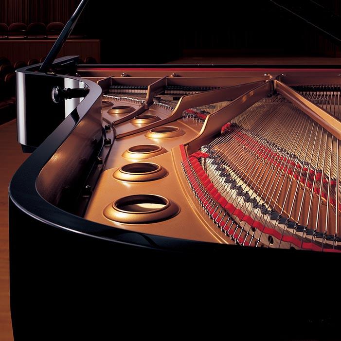 Muziekhuisdera Premium Piano dealer